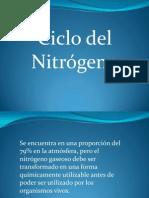 Ciclo Del Nitrogeno en Elcultivo de Plantas