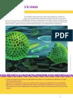 Libro PDF 1799