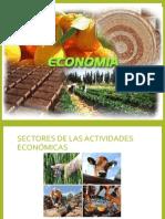 Sectores de las actividades económicas