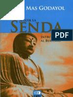 Seguir La Senda Budismo