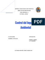 Analis-control Del Impacto Ambiental