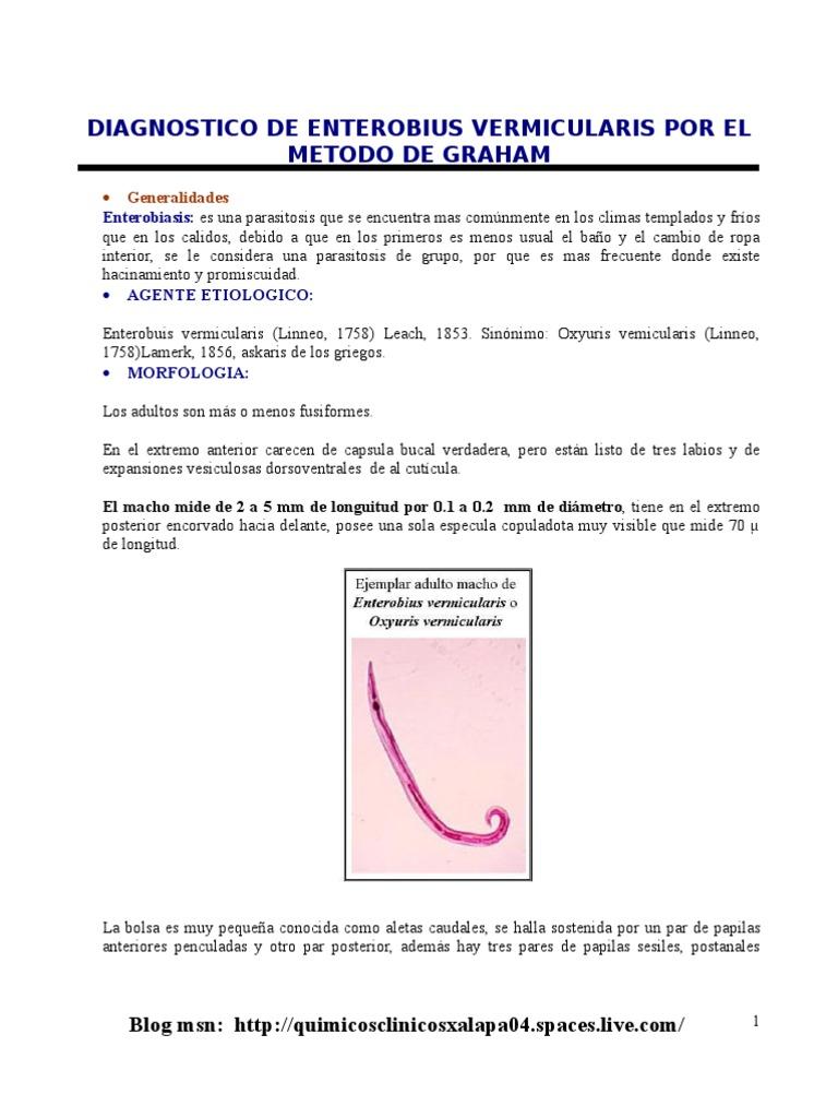 Enterobius vermicularis metodo de diagnostico - Enterobius vermicularis nome da doenca