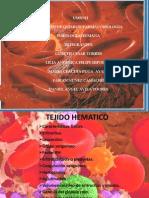 TEJIDO HEMATICO(1)