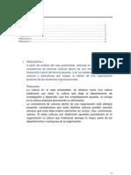 Trabajo Cultura Orellana (Autoguardado)