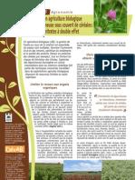 Agronomie Fiche5 Intercultures MD