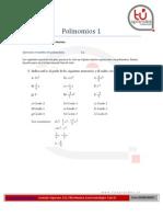 Polinomios 1