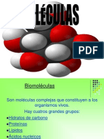 Biomoleculas Hidratos de Carbono 1228178331882568 8