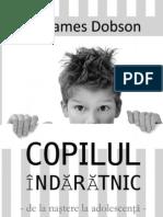 Copilul Indaratnic Carte PDF
