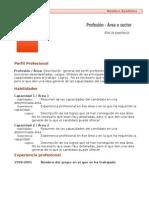 Curriculum Vitae Modelo1c Marron