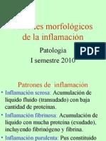 5.Inflamacion Cronica III