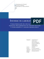 Informe laboratorio Nº1