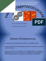 Familia Sptreptococcaceae.