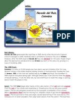 Nevado Del Ruiz Case Study - Copy