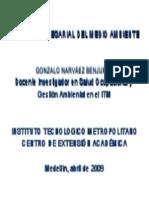 Gestión Empresarial del Medio Ambiente (2009) Gonzalo Narváez B