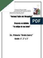 proyecto - hñahñu