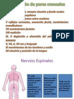 Evalucion neurologica