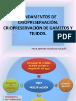 CLASE CRIOPRESERVACIÓN 2013-I