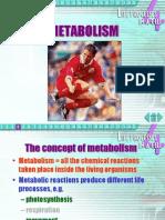 4 Metabolism