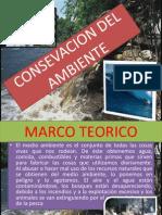 Contaminacion Ambiental.pptx Barreto Castillo