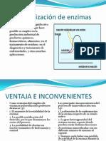 inmovilizacion-enzimatica-20111