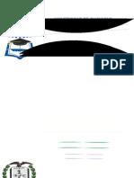 Protesis Placa