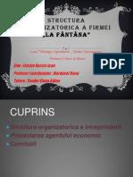 Structura Organizatorica a Firmei La Fantana