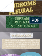 SINDROME PLEURAL