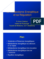 metaboblisme-P2
