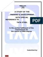 Shikha Tata Steel