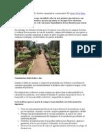 Consumo de Proximidad y Huertos Comunitarios o Municipales Por Josep Vives