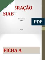 CALIBRAÇÃO SIAB_final