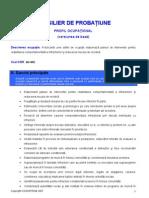 consilier_probatiune