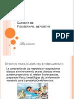FD Ef Fisiodel Entrenamiento 3