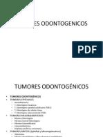Tumores Odontogenicos Graf