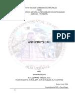 Anteproyecto prado2013