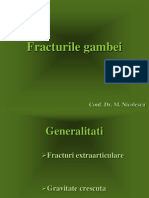Fracturile gambei