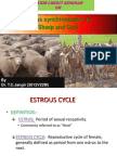 estrous synchronization in sheep and goat