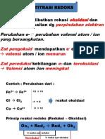 redoks-2010-2