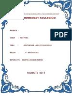 ARTICULACIONES  ANFIARTROSIS