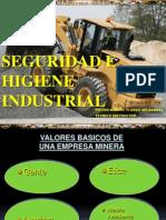 Curso Seguridad Higiene Industrial