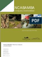 Novoa_etal_2011_Huancabamba.pdf
