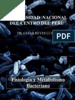 Metabolismo Bacterias