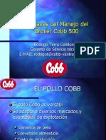 Claves Del Manejo Broiler Cobb