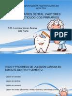 3ra Semana Caries Dental (2da Parte)