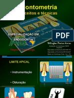 Odontometria e Localizadores Apicais 11-06-08