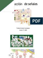 transduccion farmaco2