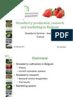 prezentare capsuni belgia