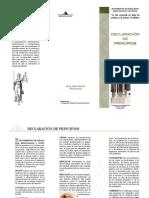 Movimiento Renovación y Justicia - Declaración de Principios
