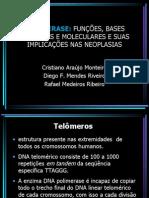 Telomerase