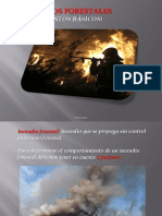 Powerpoint Incendios Forestales